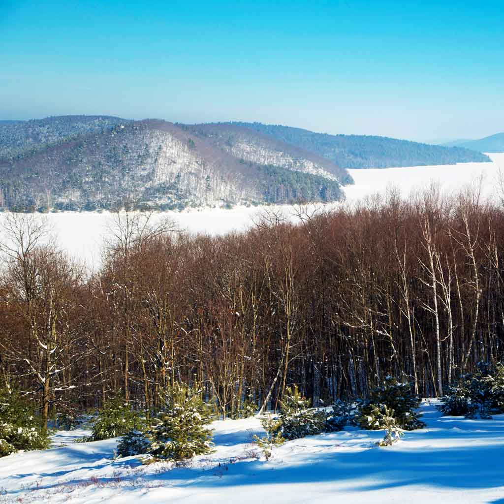 Landscape view of Mount Tom State Reservation in Holyoke, MA