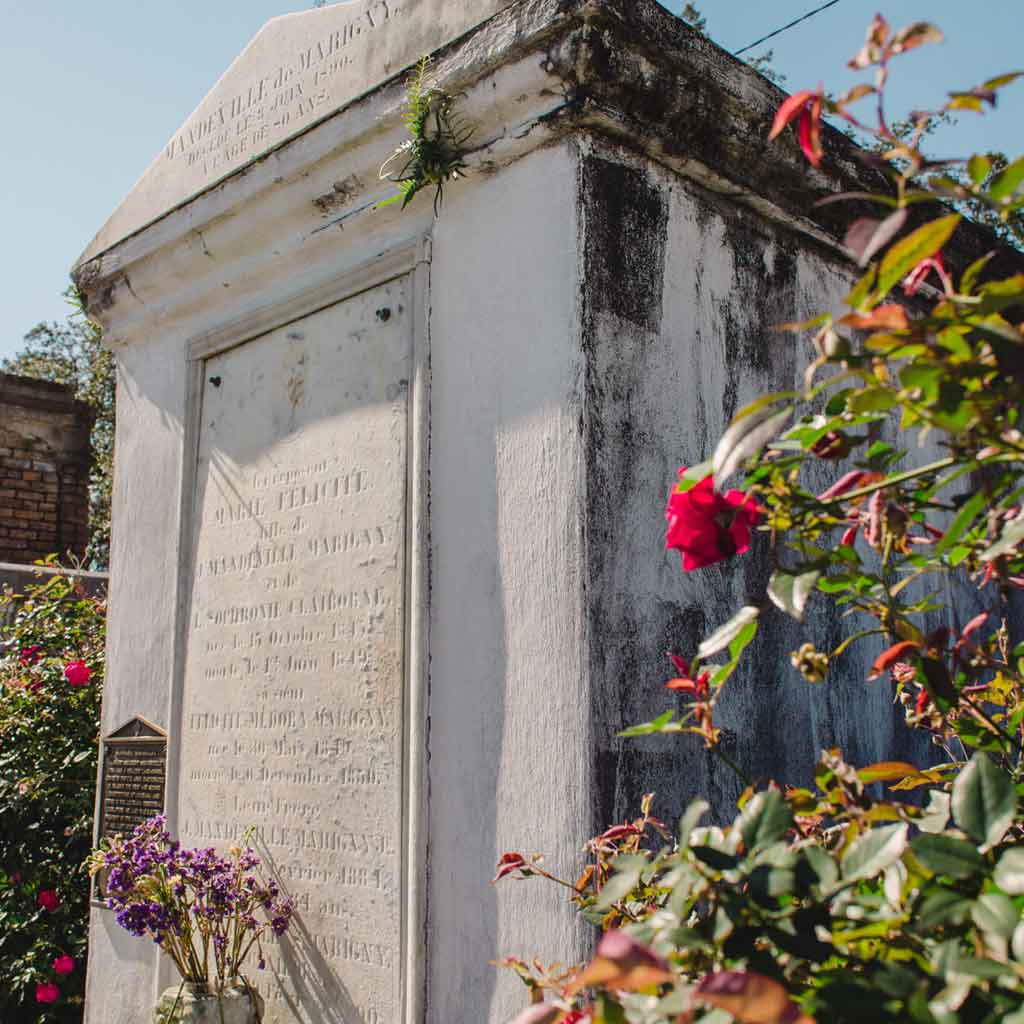Close up of an above-ground crypt at a cemetery with wild roses growing around it.