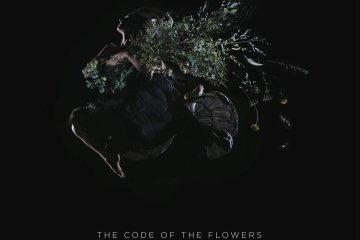 aylanereo_codeoftheflowers