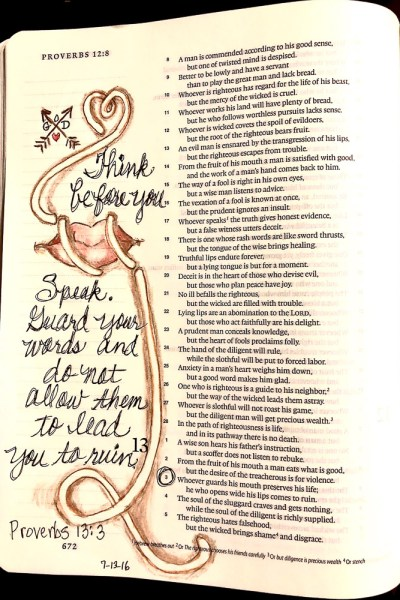 Proverbs 13 3