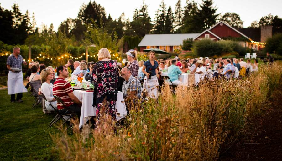 Field & Vine, Farm dinner, Portland, Foodie Travel