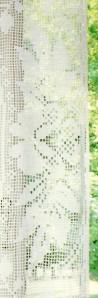 fleurs coté
