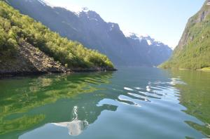Nærøyfjord, Noorwegen