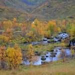 Herfstkleuren in Noorwegen