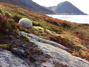 Foto: Fru Amundsen