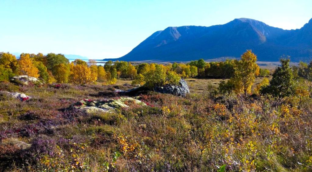 herfst Lofoten