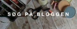 søg på bloggen - header
