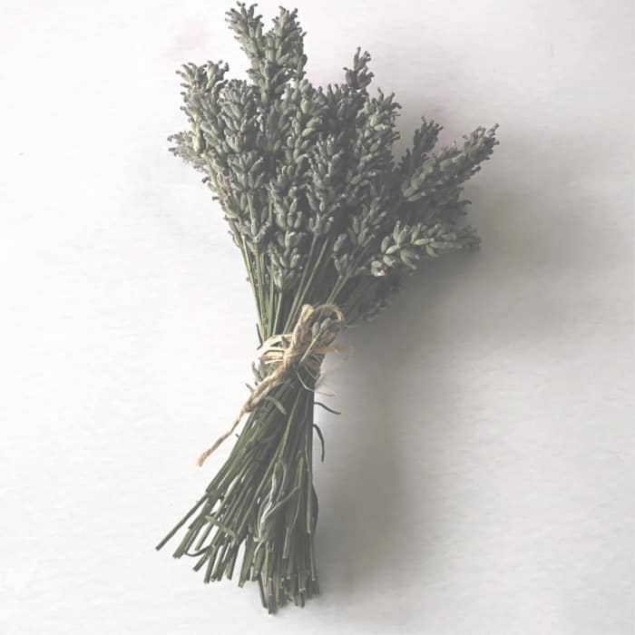 Bunches of lavender