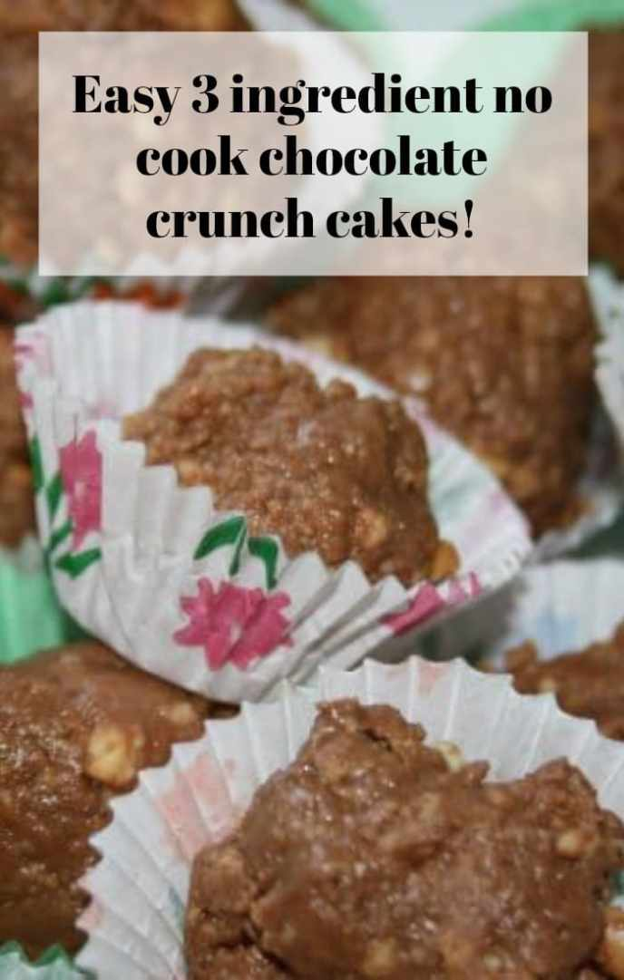 Easy 3 ingredient no cook chocolate crunch cakes