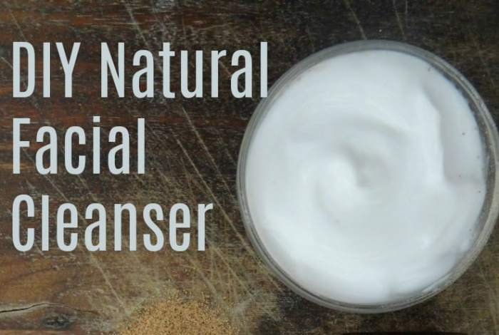 3 Ingredient DIY Natural Face Cleanser…