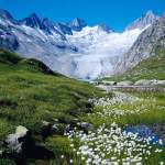 Contest ~ Enter to Win a Trip to Switzerland!