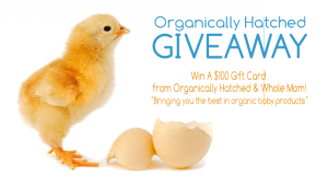 Organically-Hatched-Entry-Final