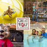 Contest ~ Enter to Win $1,000 USD Mall of America VISA® Gift Card • 2-Night stay in a Premium Suite with 4 Wolf Passes and breakfast for 4 at Great Wolf Lodge Minnesota!
