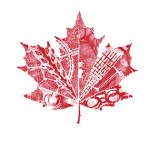 Contest ~ Enter to Win a of 12 $500 Canadian Tire Gift Cards!
