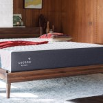 Contest ~ Enter to Win aCocoon by Sealy Mattress!