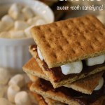 Reduced Guilt Smores – Sweet Tooth Satisfying!