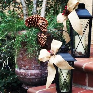 Decorating with pinecones amp branches amp other items available inhellip