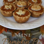 Pumpkin Pie Mini Dessert