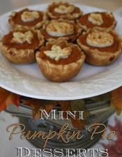 Pumpkin Pie Mini Dessert