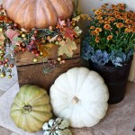 Easy Fall Outdoor Home Decor