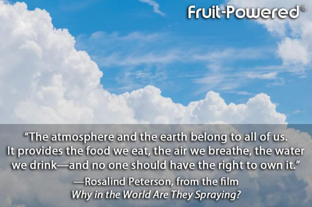 The atmosphere and the earth belong to all of us. It provides the food we eat, the air we breathe, the water we drink—and no one should have the right to own it.