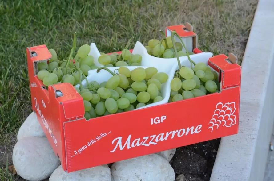 Uva Mazzarrone IGP