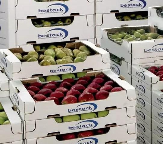 bestack nl