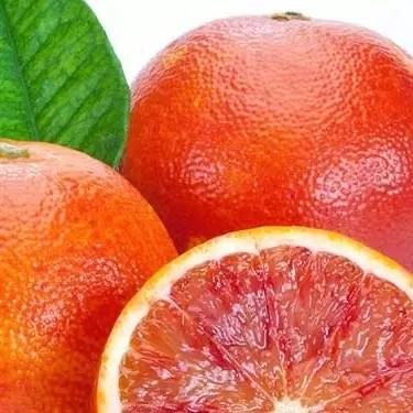 Tarocco Frutaltea