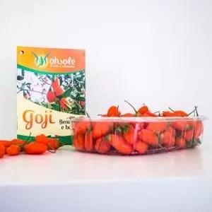 goji-prodotto