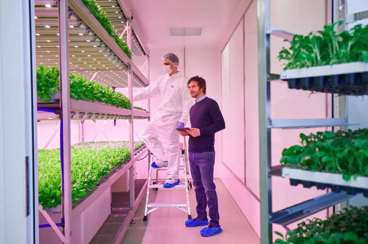 Planet_farms01