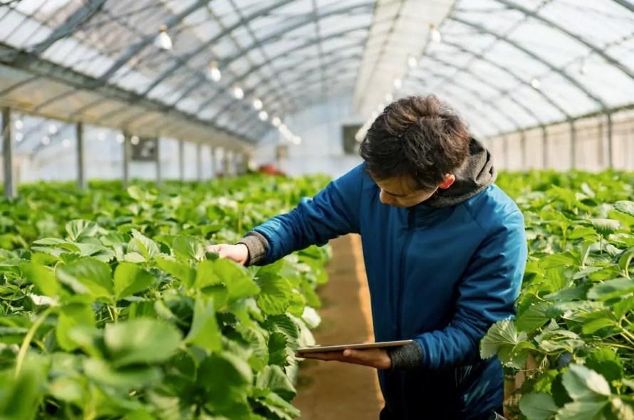 Agrievolution