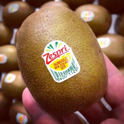 Zespri kiwi Fruit Logistica 2020 ©FM