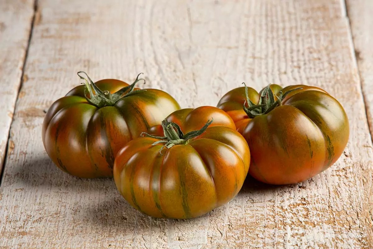 Gandini-pomodori-costoluto-2020