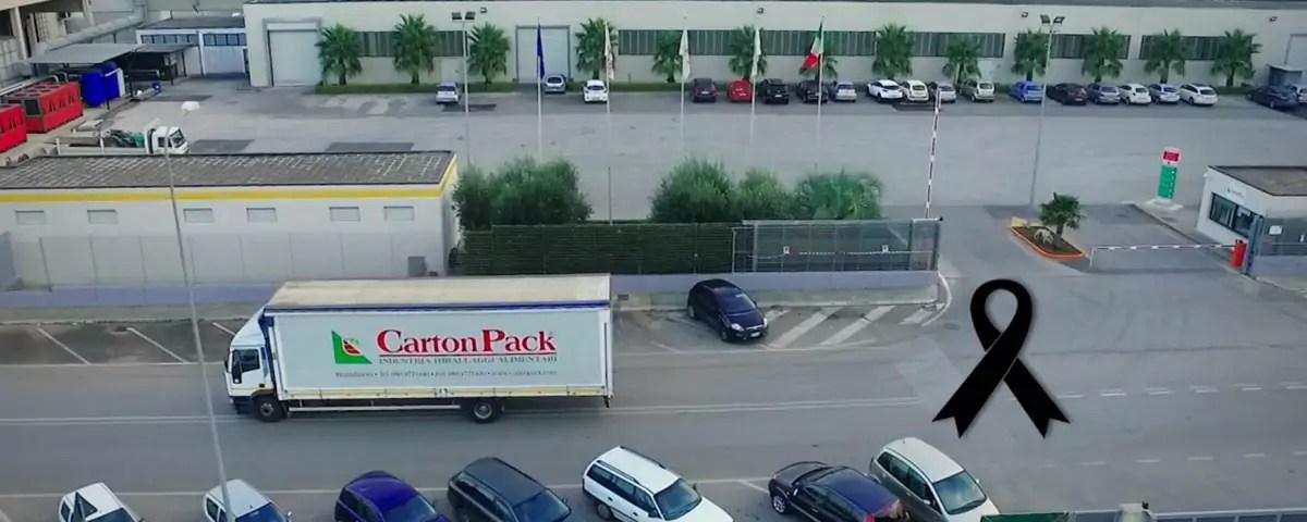 Carton-Pack-Nicola-Leone