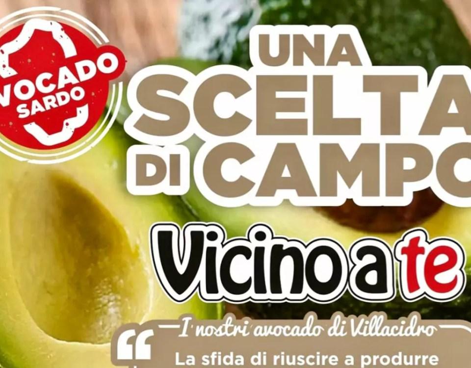 Avocado-Sardegna-Villacidro-Frongia