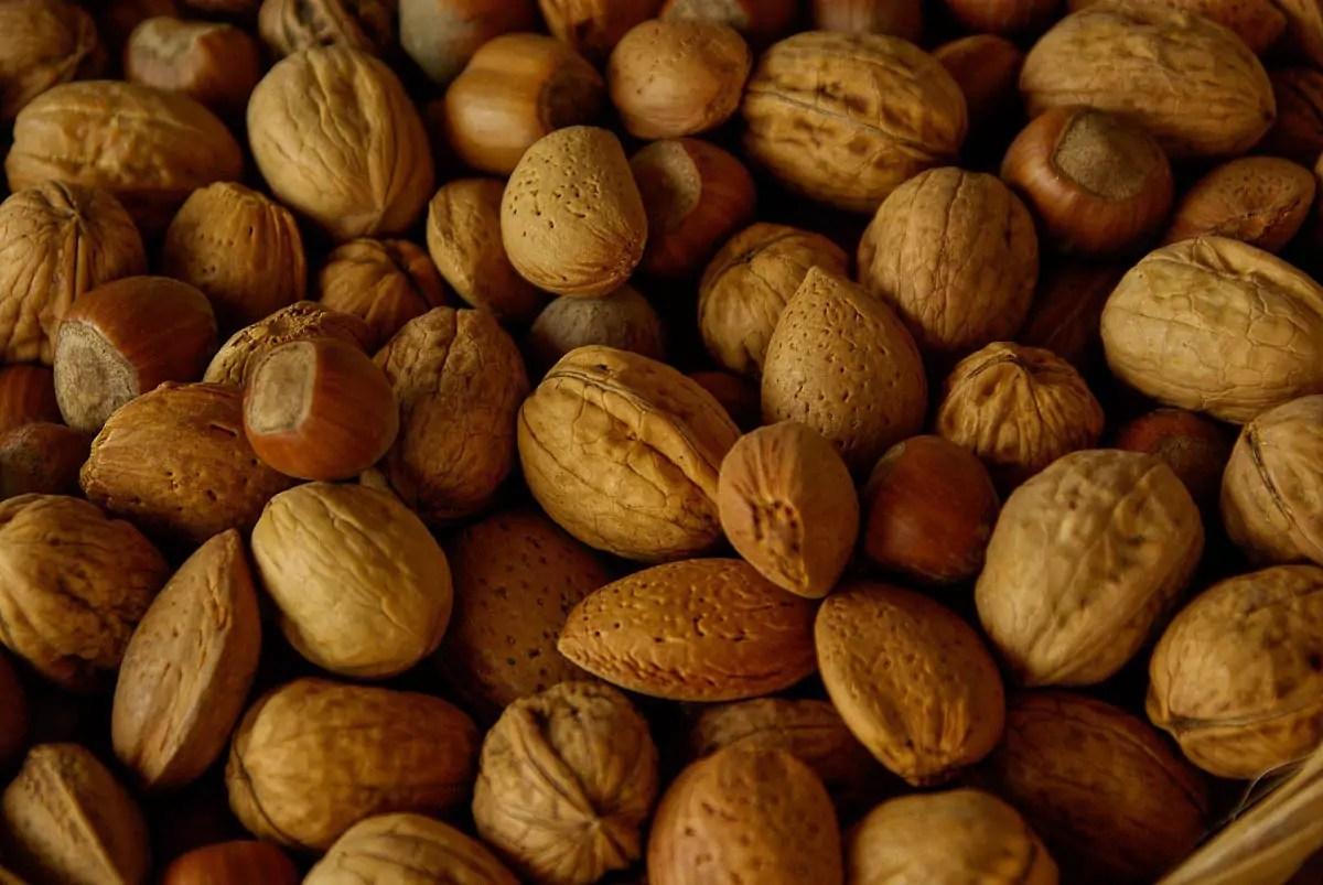 frutta secca Besana
