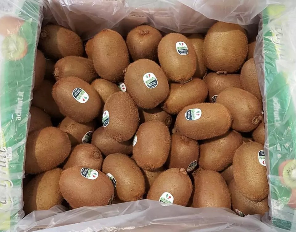 Kiwi-Adfruit-Taiwan-guinness-frutti
