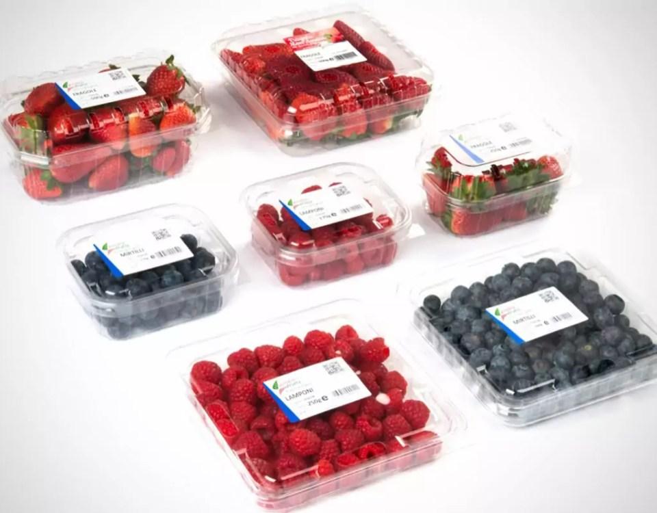 Garden-Frutta-fragole-frutti-di-bosco-social-plastic