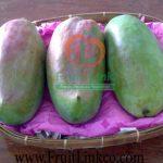 Sedika Mango -fresh- by Fruit Link