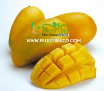 Egyptian Mango best quality by Fruit Link
