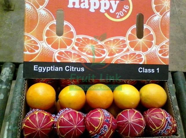 Our first export of navel orange season 2017 to Bangladesh