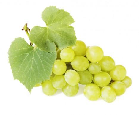 Raisin Blanc Dshydrat Granuls Fruitofood Fruits