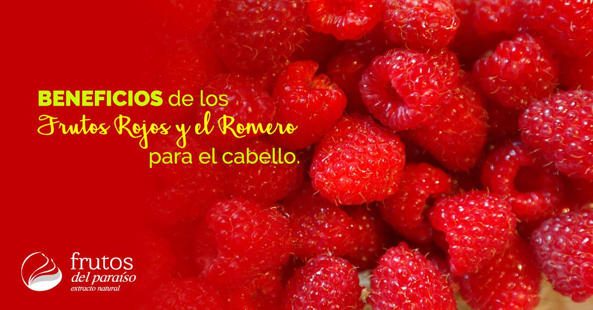 Kit de frutos rojos y romero para el cabello