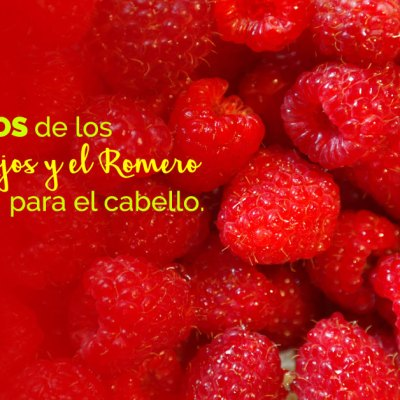 Conoce los beneficios de los Frutos Rojos y el Romero para el cabello con Frutos del Paraíso.