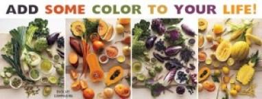 Aggiungi-colore-alla-tua-vita-300x113