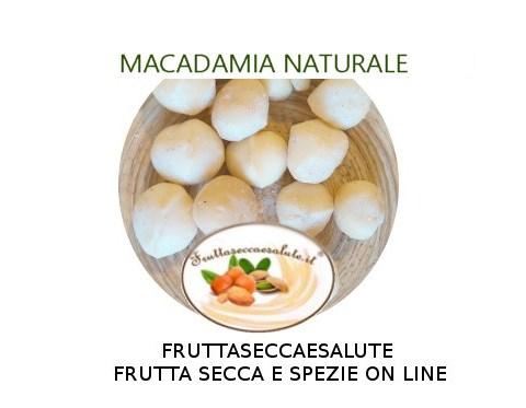 noce di macadamia, albero ,pianta, coltivazione, offerta, vendita. dove acquistare
