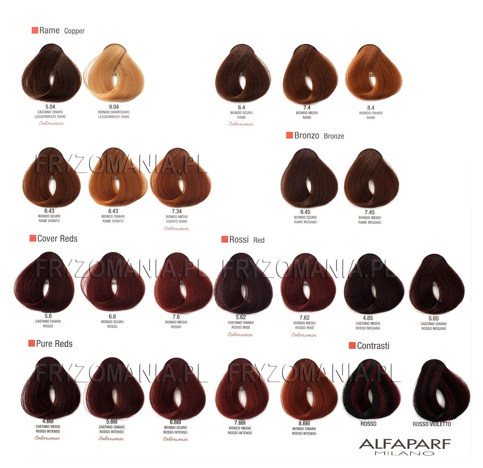 Alphaparf Evolution Color Chart