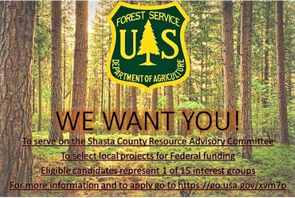 Phone 020 8496 2310 (monday to thursday, 9am to 5.15pm and friday, 9am to 5pm) phone 020 8496 3000 (out of hours) minicom 020 8496 3010. Shasta Trinity National Forest News Events