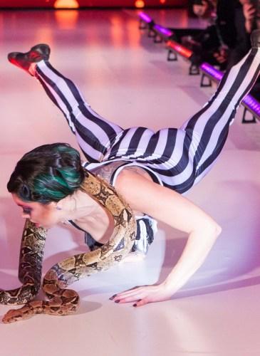 2016 Hotbed Benefit: Le Cirque du Nuit
