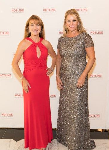 Domestic Violence Hotline's 20th Annual Gala